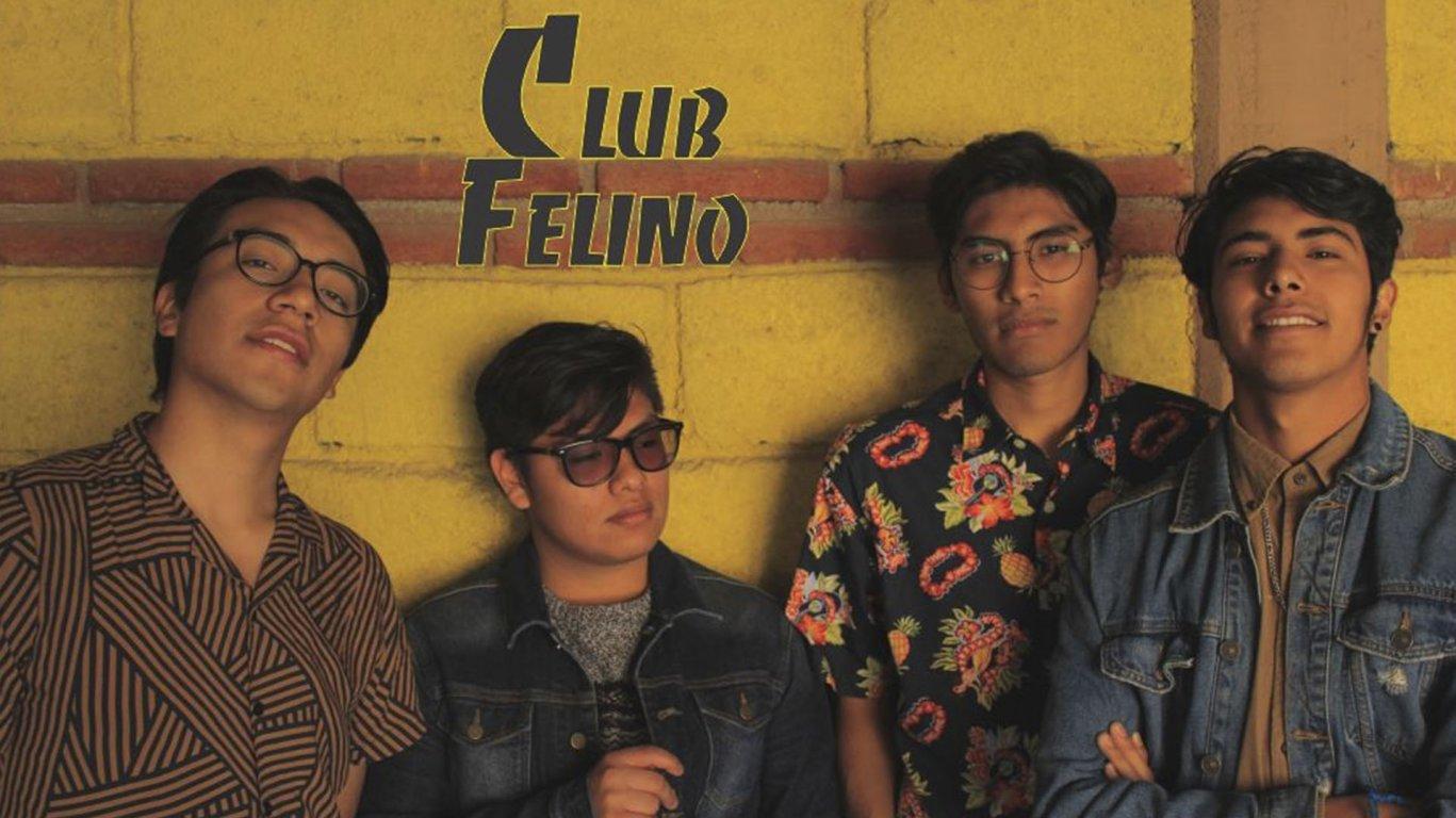 Club Felino